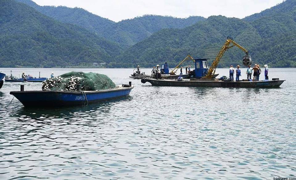 بعد فتح بوابات سد شين آن جيانغ في مدينة هانغتشو بمقاطعة تشجيانغ بشرقي الصين، انطلق موسم صيد الأسماك لأول مرة في العام الجاري وتم اصطياد أكثر من 250 ألف كيلوغرام من سمك المبروك كبير الرأس